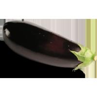 aubergines-grosses
