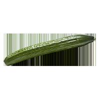 concombres-anglais