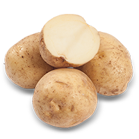 patates-blanches
