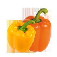poivrons-jaunes-oranges