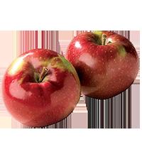 pommes-mcintosh