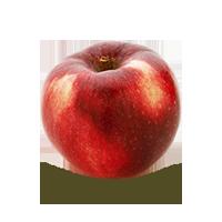 pommes-paula-red