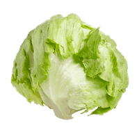 salade-iceberg