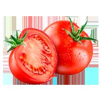 tomates-de-serre