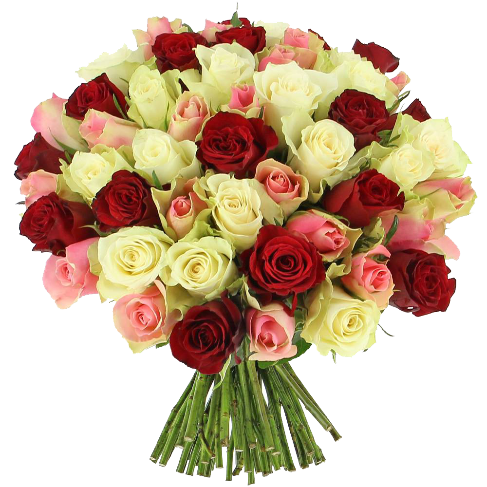 bouquet-roses-tendresse-3