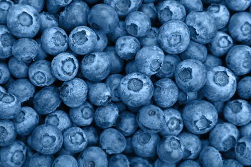 fresh-blueberries-486358